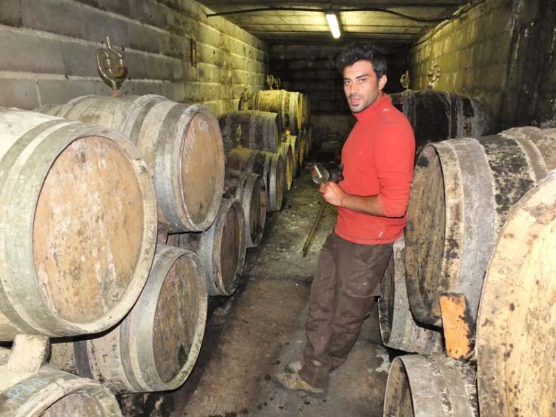 1courtois_etienne_barrel_cellar_whites3