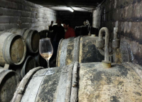 1courtois_barrel_cellar_glass_white