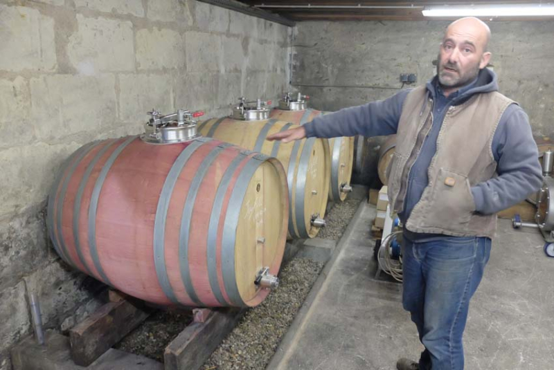 1laurent_saillard_cabernet_franc_500l_maceration