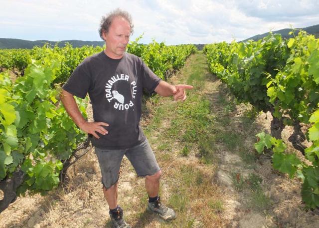 1mazel_gerald_oustric_vineyard