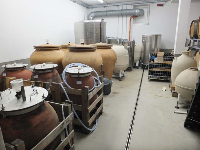 1istvan_bencze_facility_amphorae_overview