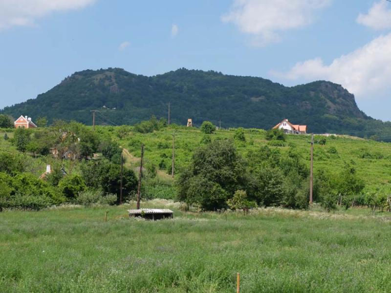 1istvan_bencze_volcanoes_slopes_former_vineyards