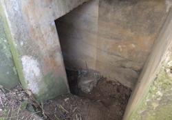 1ergersheim_bunker_stairs