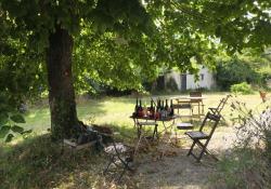 1caplain_table_tree_shade