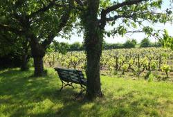 1clos_meslerie_orchard_bench_parcel