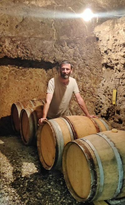 1harvest_vincent_bergeron_cellar