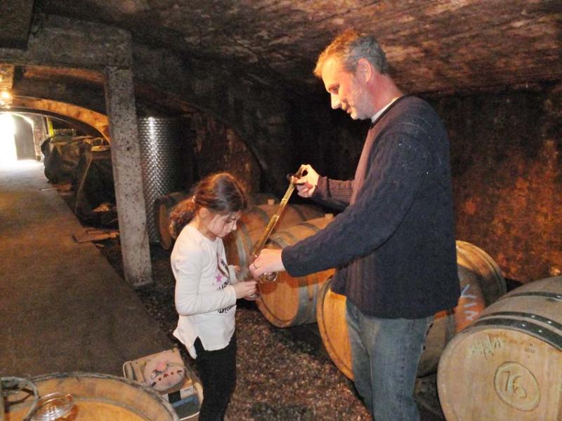 1peter_hahn_daughter_wine