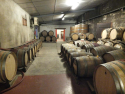 1philippe_tessier_barrel_room