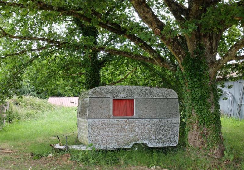 1courtois_claude_trailer_tree