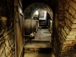 1alice_de_moor_courgis_cellar