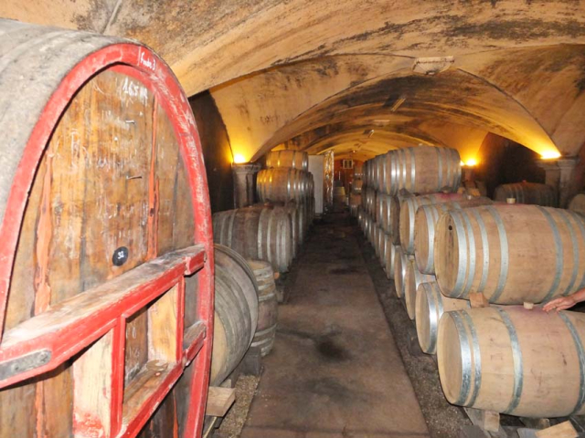 1vignes_maynes_cellar_vaulted_ceiling_foudre