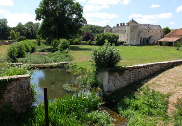 Clos des Vignes du Maynes (Burgundy)