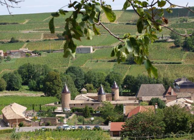 1philippe_jambon_chasselas_the_castle