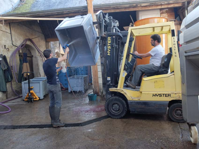1harvest_pascal_potaire_cleaning