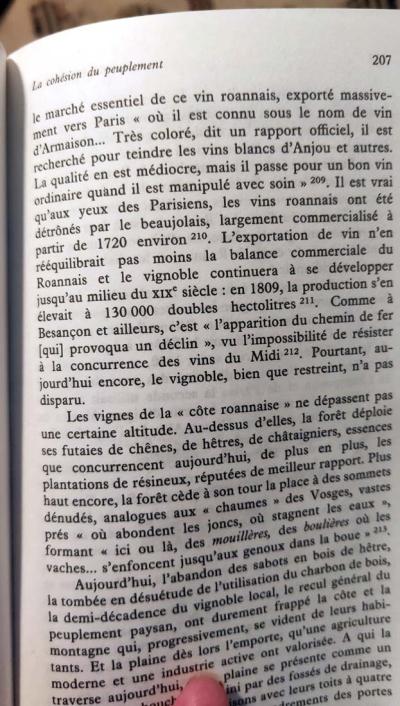 1cote_roannaise_braudel