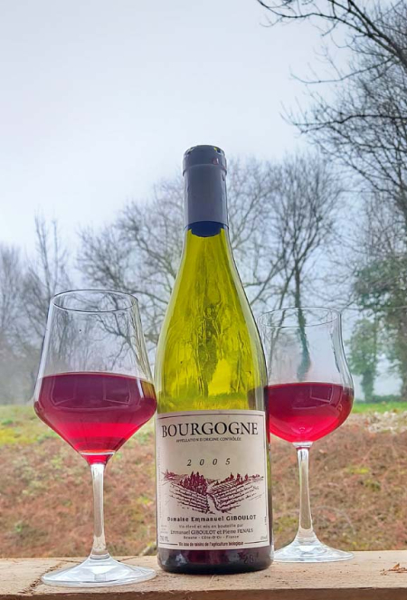 1first_wine2020