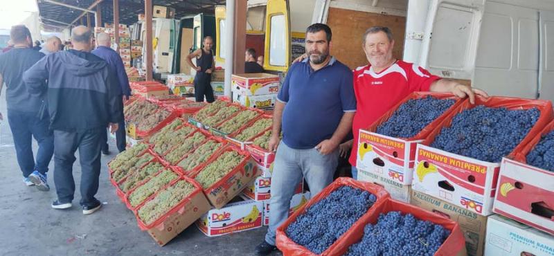 1wholesale_grapes_georgia_gen