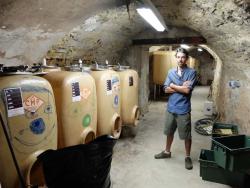 1ozil_cellar
