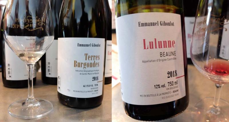 1barge_tasting_giboulot_wines