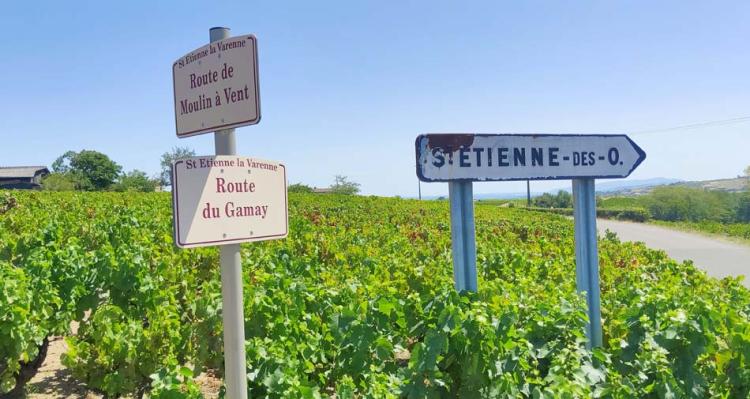 1romain_des_grottes_wine_route