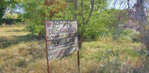 1romain_des_grottes_sign