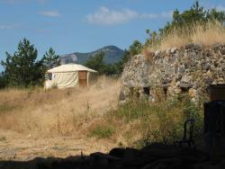 1champ_possible_yurt