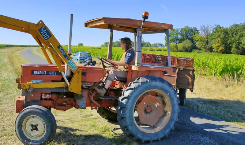 1maisons_brulees_paul_tractor