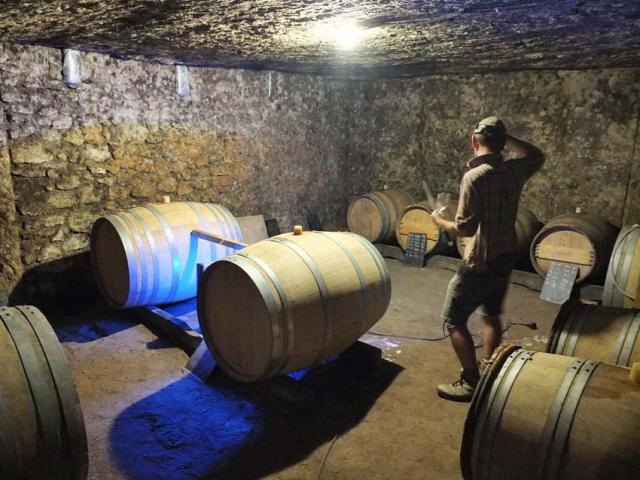 1thomas_puechavy_cellar_barrels