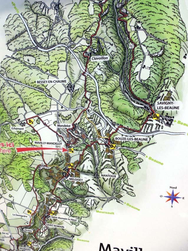 1dandelion_location_map