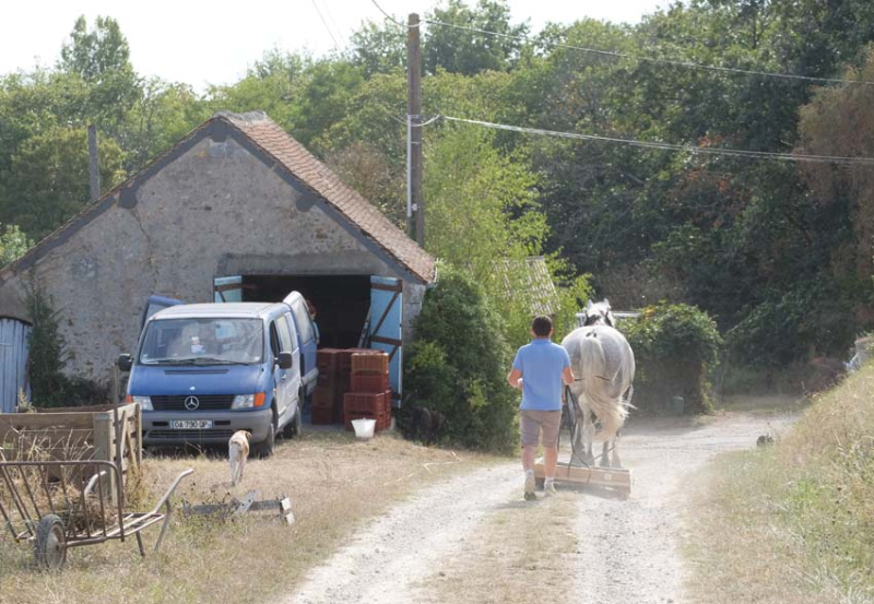 1maisons_brulees_going_to_work