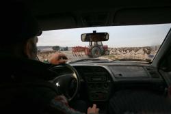 1pfifferling_driving