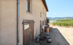 1romain_des_grottes_farm