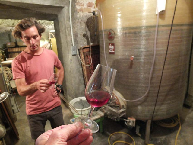 1anders_cellar_GB_GN_glass
