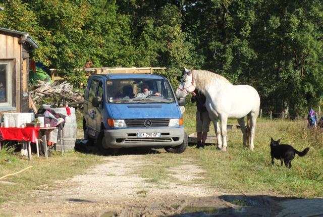 1maisons_brulees_horse