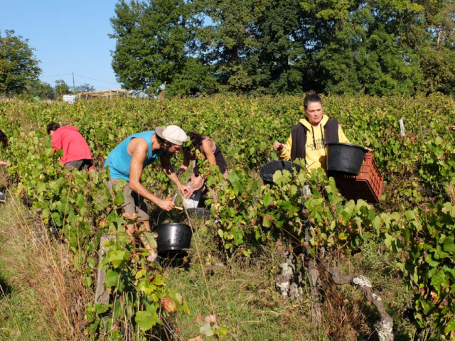 1maisons_brulees_pickers_corinne