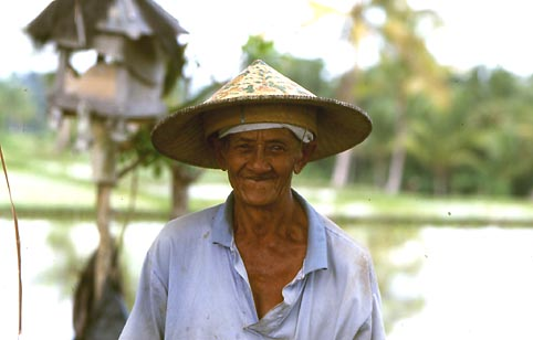 Image result for balinese smiles ricefield